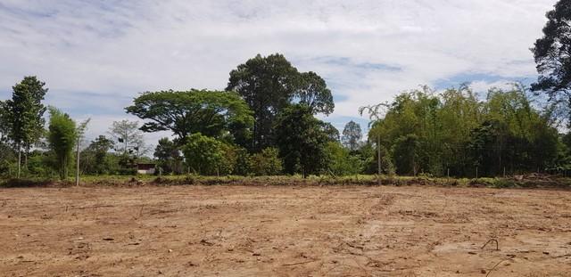 ขาย ที่สวยติดคลอง ปรับแล้วทั้งแปลง มีต้นไม้ใหญ่ เนื้อที่ 8-1-97 ไร่ โฉนดพร้อมโอน อ.บ้านนา จ.นครนายก