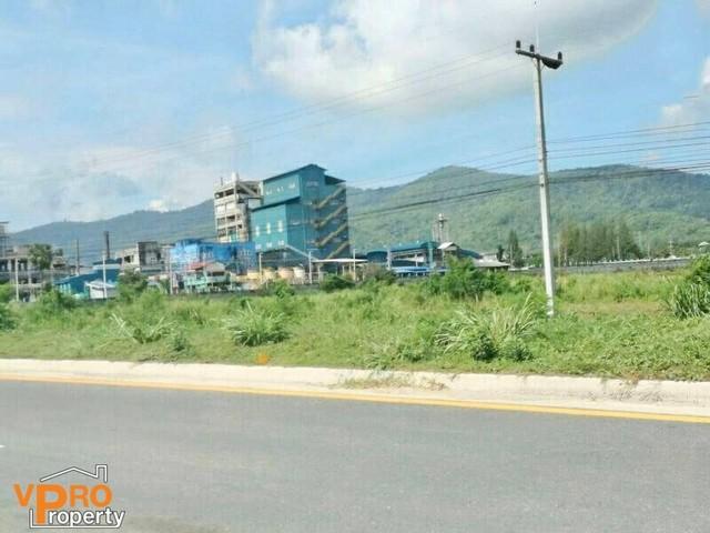 ขายที่ดิน 11 ไร่ 37 ตรว. บ้านบึง ชลบุรี ทำเลเหมาะแก่การลงทุน