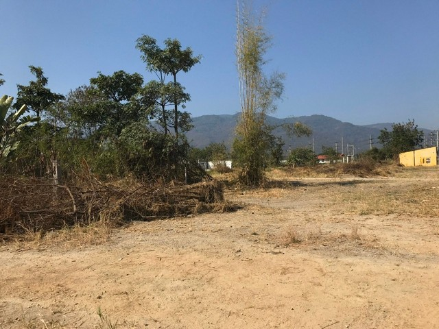 ขายที่ดิน อำเภอแม่ริม จ.เชียงใหม่ ตั้งอยู่ตรงหัวมุมสี่แยกกองพันสัตว์ต่าง ฝั่งป้อมตำรวจ
