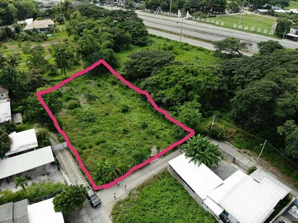 ขาย ที่ดินเปล่า ราคา 6,000,000 บาท เนื้อที่ 393 ตรว. ต.ป่าแดด อ.เมืองเชียงใหม่