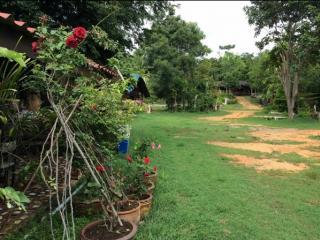 ขายที่ดิน 20 ไร่ พร้อมบ้านติดถนนใหญ่ ใกล้มหิดล ไทรโยค กาญจนบุรี 6.9 ล้าน 0962675028