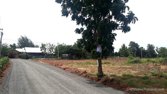 ขายด่วน ที่ดิน (ถมเรียบร้อย) ถนน ชัยภูมิ-สี่คิ้วทางลงรถไฟรางคู่