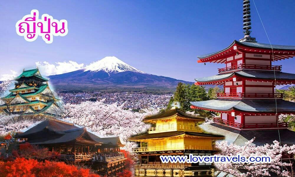 ทัวร์ญี่ปุ่น โตเกียว ALL STAR LAVENDER 4 วัน