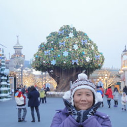 Romantic snow in korea  11-15 กุมภาพันธ์  2558