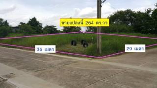 ขายที่ดินเปล่าถมแล้ว พุทธมณฑลสาย 2 ซอย 33 แปลงมุม 264 ตร.วา ด่วน โปรโมชัน ฟรีค่าโอน
