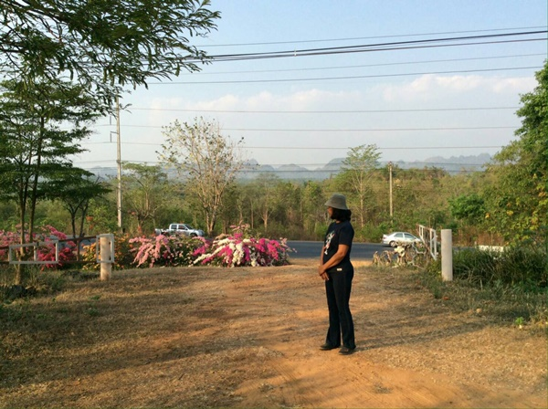ขายที่ดิน 24ไร่ พร้อมบ้านติดถนนใหญ่ไทรโยค กาญจนบุรี ใกล้มหิดล 6.9ล้าน 09-6267-5028