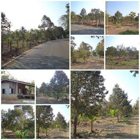 P53LF1909031 ขายที่ดิน 13-2-47 ไร่ จันทบุรี ท่าใหม่ 16.5 ล้าน