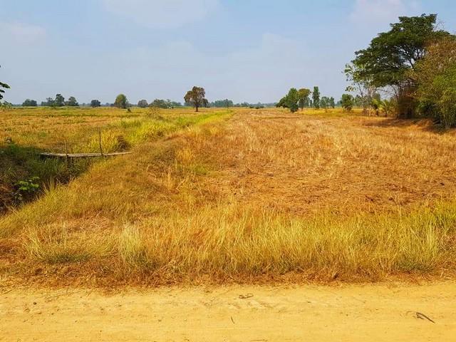 ขายที่่ดินโฉนด 10ไร่ 3 งาน 87 ตรว. หนองยาว เมืองสระบุรี ใกล้ถนนมิตรภาพ เหมาะทำการเษตรหรือบ้านสวน