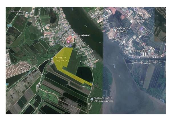 ขายที่ดิน 171 ไร่ 2 งาน 14 ตารางวา ต.บางหญ้าแพรก อ.เมือง จ.สมุทรสาคร