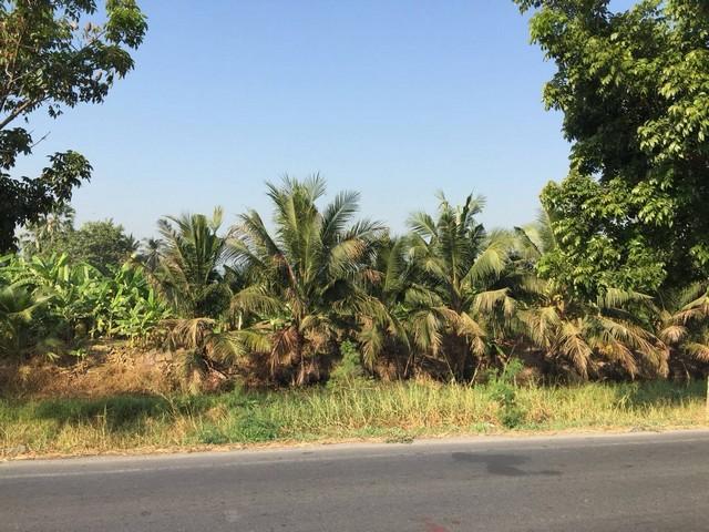 ขายที่ดิน ติดคลองประปามหาสวัสดิ์ นนทบุรี รูปที่สวย เนื้อที่ 1 ไร่ 2 งาน 90 ตรว.