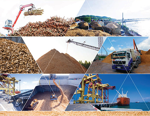 Largest exporter of high excellent woodchips with FSC certified