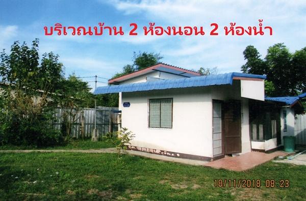 ให้เช่าบ้านชั้นเดียว มี 2 ห้องนอน 2 ห้องน้ำ ต.โพธิ์ศรี อ.พิบูลมังสาหาร จ.อุบลราชธานี