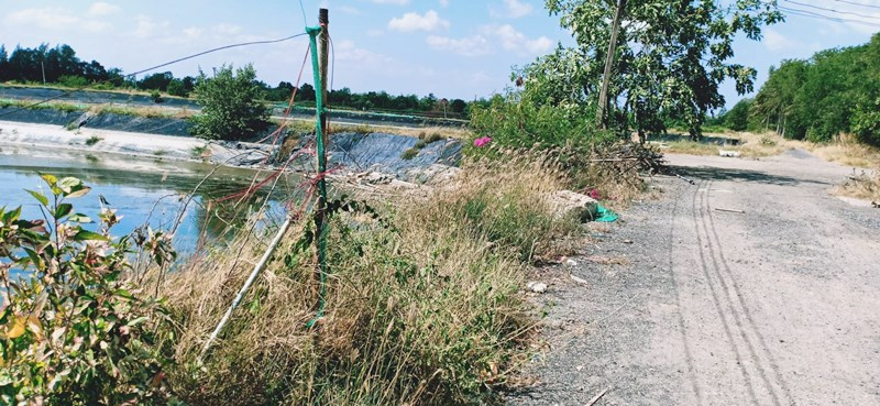 ขายที่ดิน พร้อมบ่อกุ้ง 280 ไร่ ดำเนินงานต่อได้ทันที กาญจนดิษฐ์ สุราษฏร์ธานี อุปกรณ์ครบ