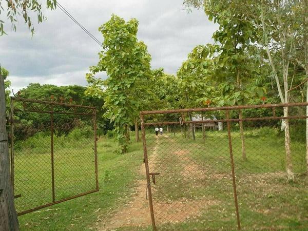 ขายที่ดิน อำเภอเถิน จังหวัดลำปาง 9 ไร่เศษ ขายไร่ละ 320,000 บาท
