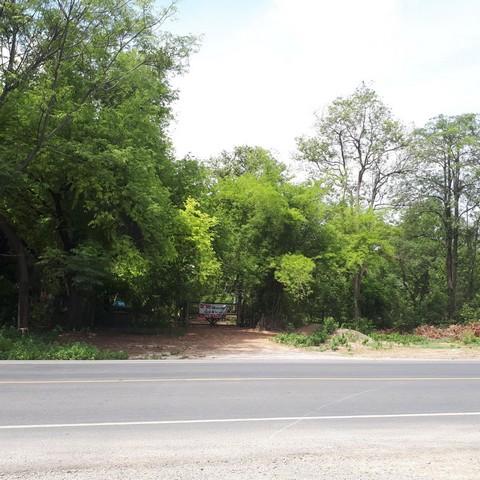 ขายด่วน ที่ดินเปล่าถมแล้ว 4 ไร่ 18 วา ตรงข้ามโรงงานเบทาโกร แปลงสวยติดกับถนนสาย 2 สระบุรี หล่มสัก 21