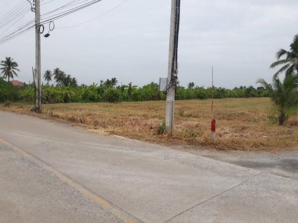 ขายที่ดินเปล่า 103 ตรว. 200 ตรว.และ 1 ไร่ ติดหมู่บ้านรติรัตน์ บางบัวทอง นนทบุรี