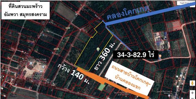 ขายที่ดินสวนมะพร้าว อัมพวา 34 ไร่ ติดถนน 140 เมตร ทำเลดี ราคาถูก จากตลาดน้ำ 18 นาทีเท่านั้น