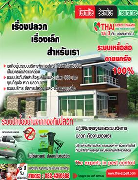 นวัฒกรรมใหม่ กำจัดปลวก ไร้กลิ่น ตายยกรัง By Thai-expert  Thailand