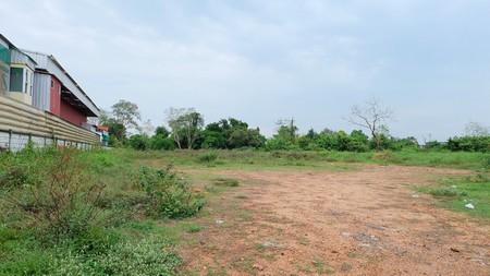 ขายที่ดินเปล่า ติดถนนชัยพฤกษ์ เนื้อที่  2 ไร่ 2 งาน 93 ตรว. ปากเกร็ด  นนทบุรี